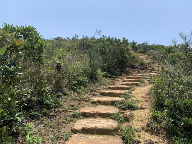 Hiking 11.5.2019 Tuk Ngu Shan (15)