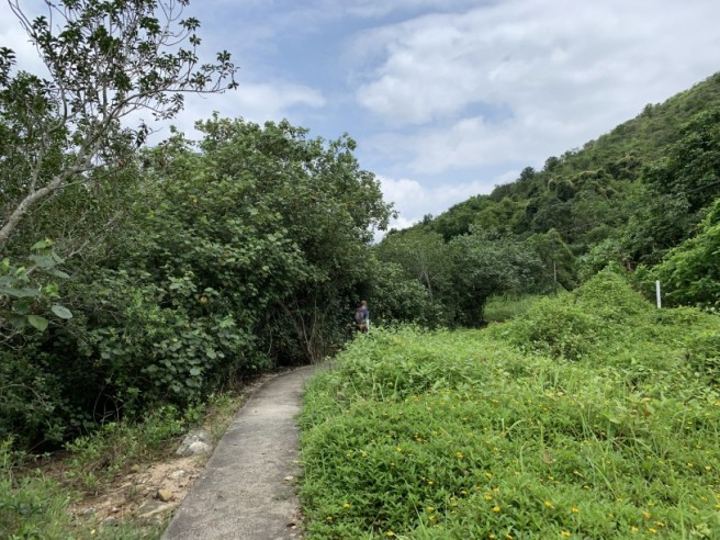 Hiking 19.5.2019 Shek Nga Tau (12)