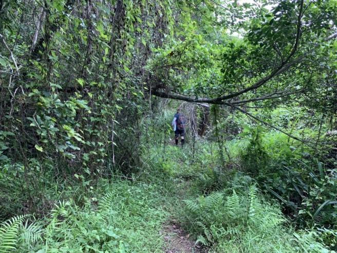 Hiking 19.5.2019 Shek Nga Tau (16)