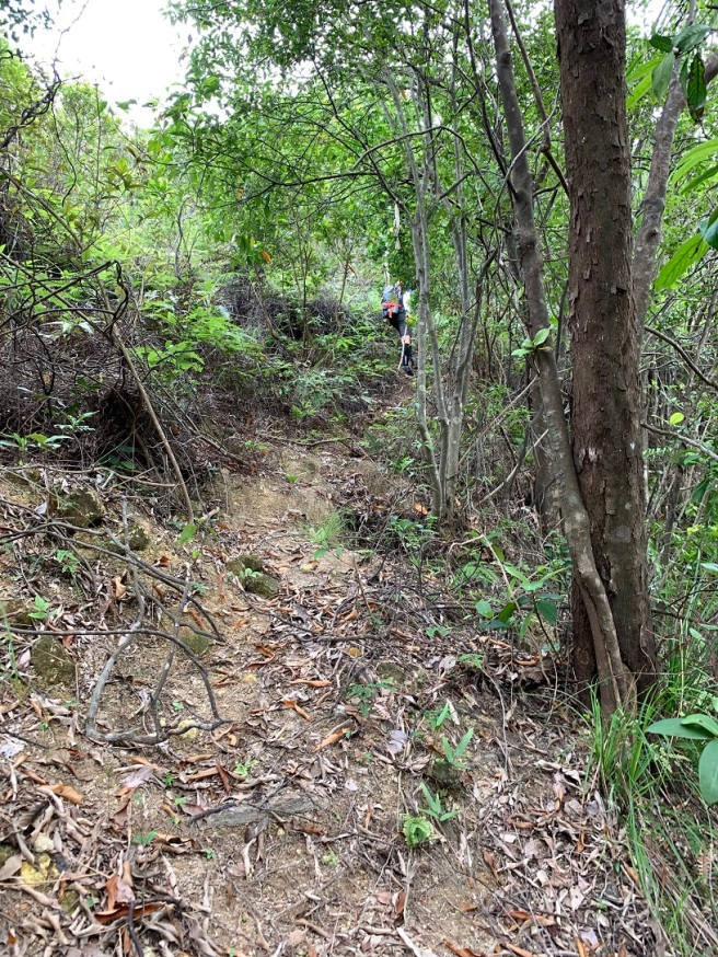 Hiking 19.5.2019 Shek Nga Tau (19)