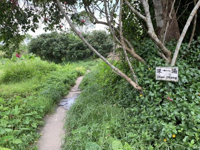 Hiking 19.5.2019 Shek Nga Tau (2)