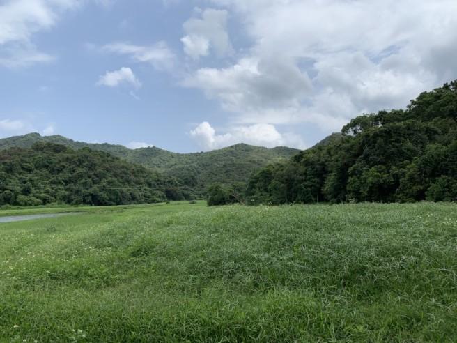 Hiking 19.5.2019 Shek Nga Tau (41)