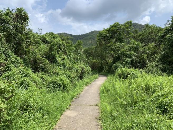 Hiking 19.5.2019 Shek Nga Tau (5)