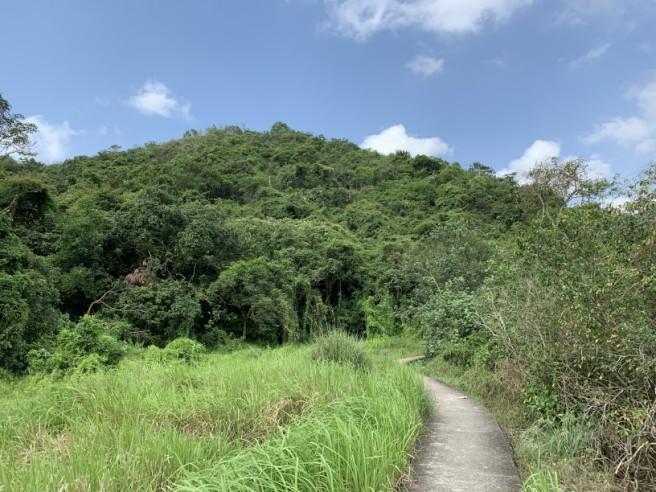 Hiking 19.5.2019 Shek Nga Tau (58)