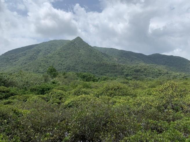 Hiking 19.5.2019 Shek Nga Tau (6)
