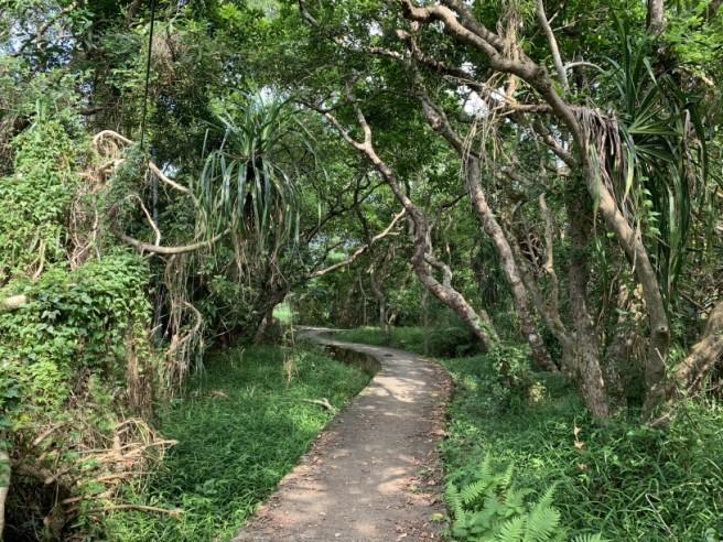 Hiking 19.5.2019 Shek Nga Tau (62)