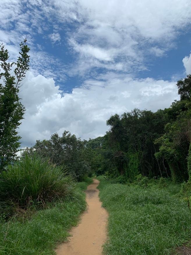 Hiking 2.6.2019 Au Pui Leng (1)