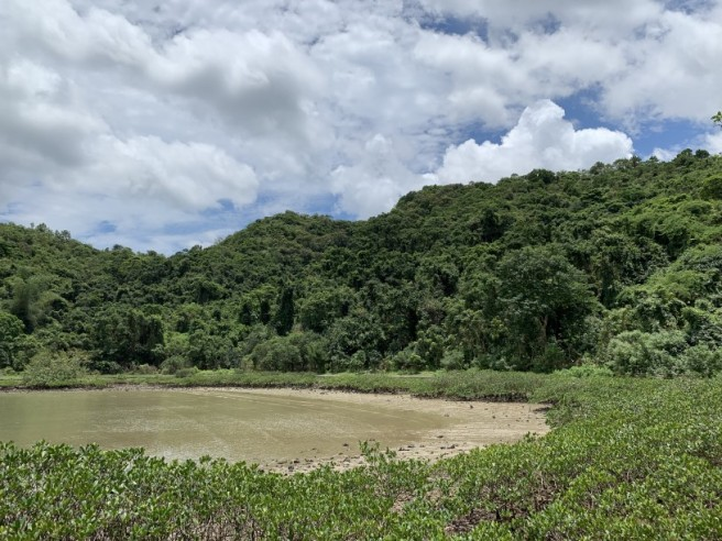 Hiking 2.6.2019 Au Pui Leng (14)