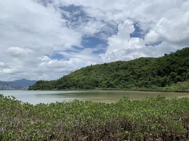 Hiking 2.6.2019 Au Pui Leng (15)