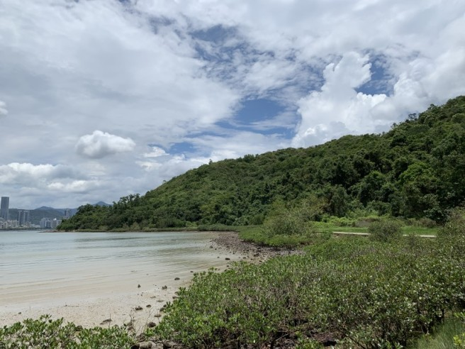 Hiking 2.6.2019 Au Pui Leng (16)