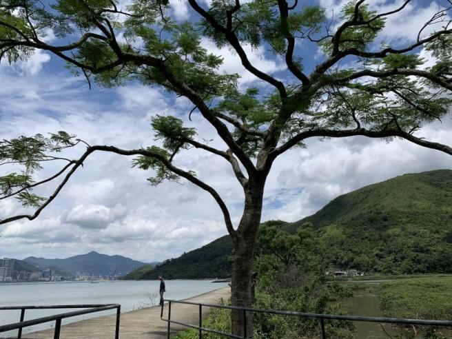 Hiking 2.6.2019 Au Pui Leng (20)