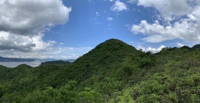 Hiking 2.6.2019 Au Pui Leng (39)