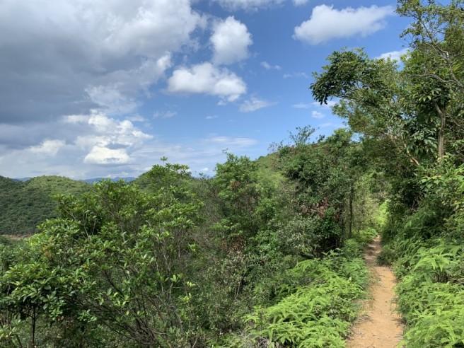 Hiking 2.6.2019 Au Pui Leng (47)