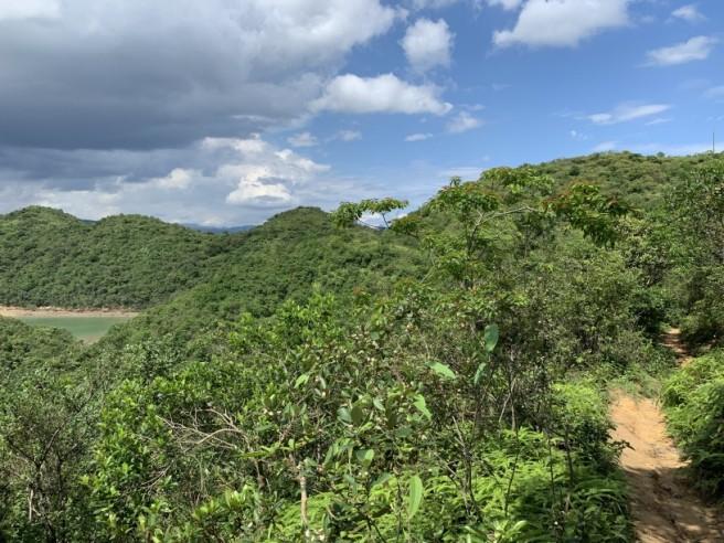 Hiking 2.6.2019 Au Pui Leng (49)