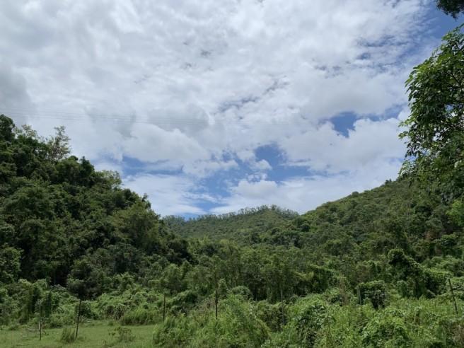 Hiking 2.6.2019 Au Pui Leng (5)