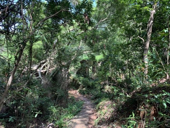 Hiking 2.6.2019 Au Pui Leng (50)
