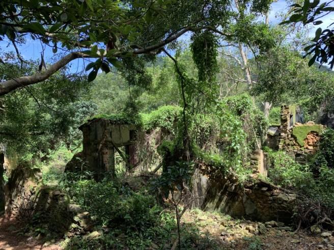 Hiking 2.6.2019 Au Pui Leng (52)