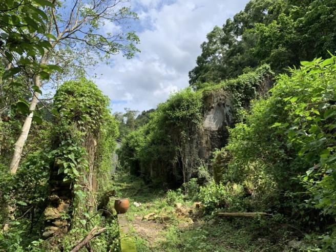 Hiking 2.6.2019 Au Pui Leng (55)