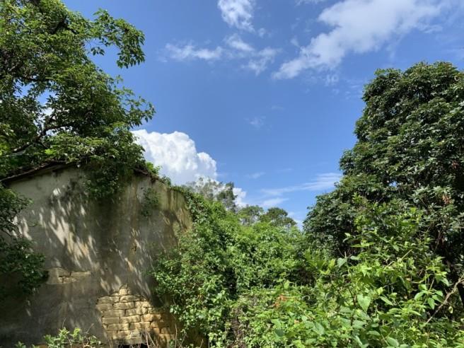 Hiking 2.6.2019 Au Pui Leng (56)
